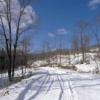 阿寒の森への道案内